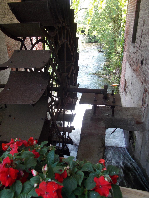 Villa singola Mulino in vendita a Gambolo Vigevano Pavia Lombardia (2)